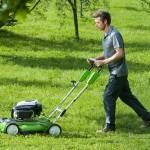 У яких випадках варто вибрати газонокосарку акумуляторну
